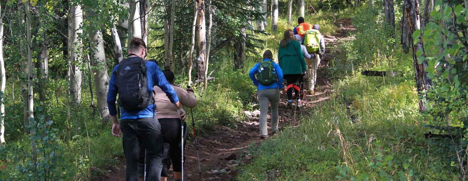 Adaptive Sports Participants Climbing a Mountain